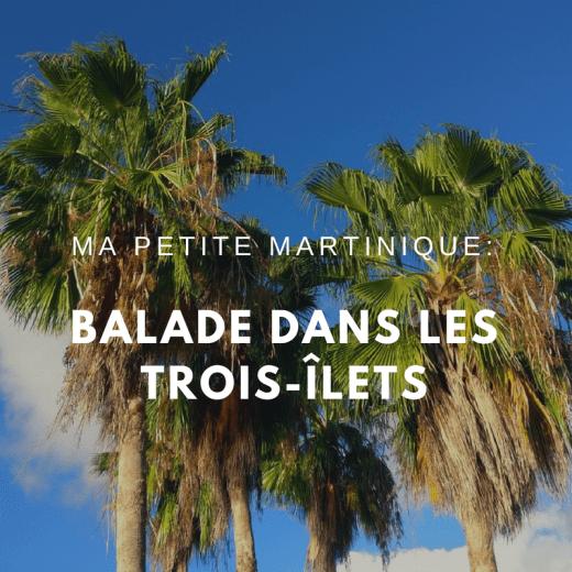 Petite Martinique : balade dans les Trois-ilets