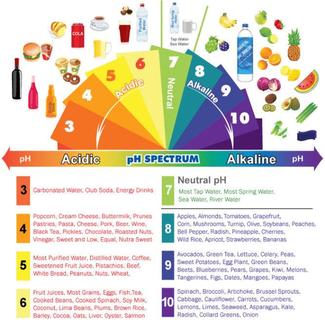 https://i1.wp.com/mindbodygreen-res.cloudinary.com/image/upload/c_limit,w_709,q_auto,f_auto/ftr/acidic-alkaline-phchart.jpg?resize=667%2C657&ssl=1