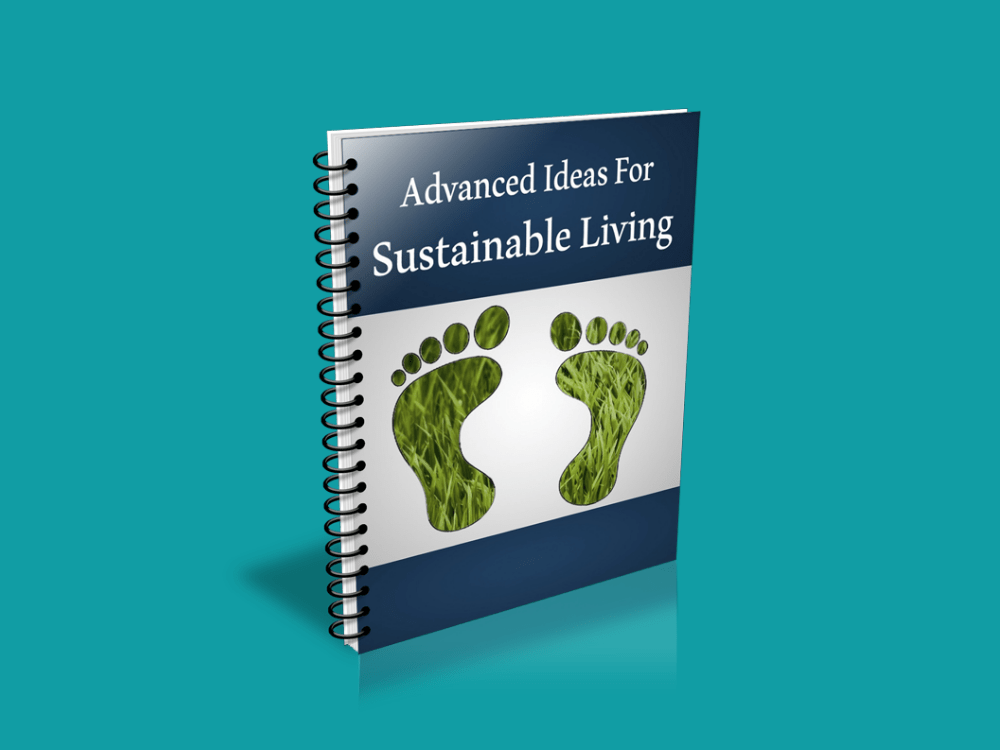 Sustainable Living Report Banner