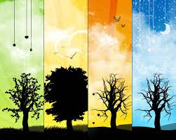 Four Seasons depicted in one image of trees and vibrant colored panels.