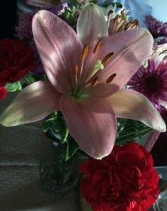 A pink Lily displayed in a table-top vase.