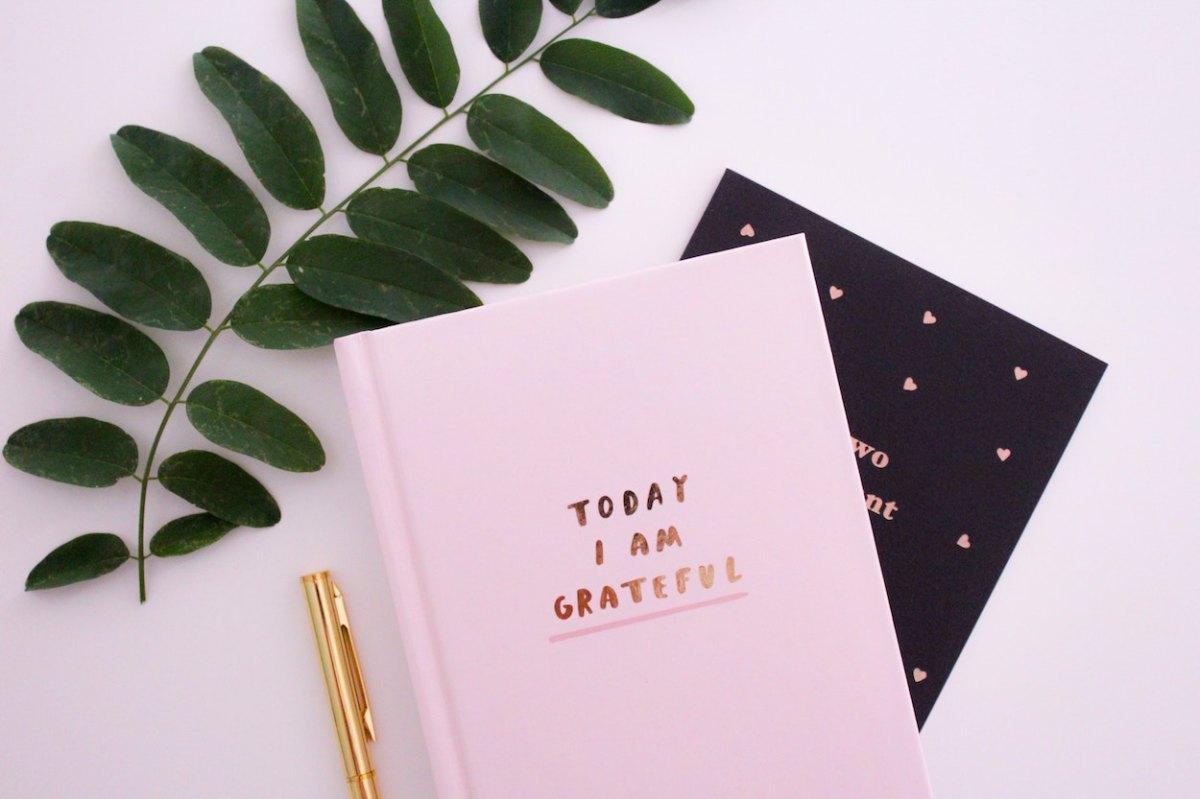 sign - today i am grateful