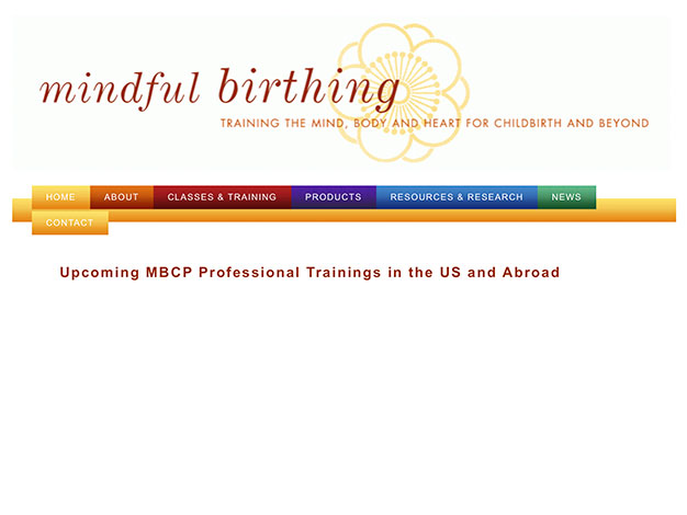 Upcoming MBCP Professional Trainings in Freiburg, Germany