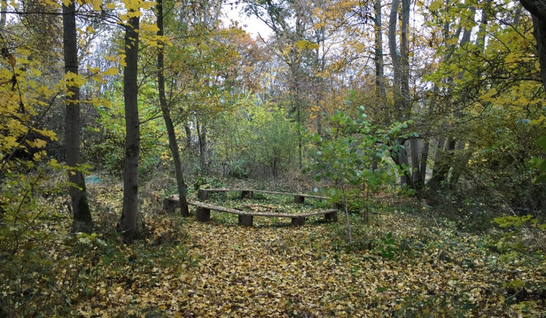 seating in woodland