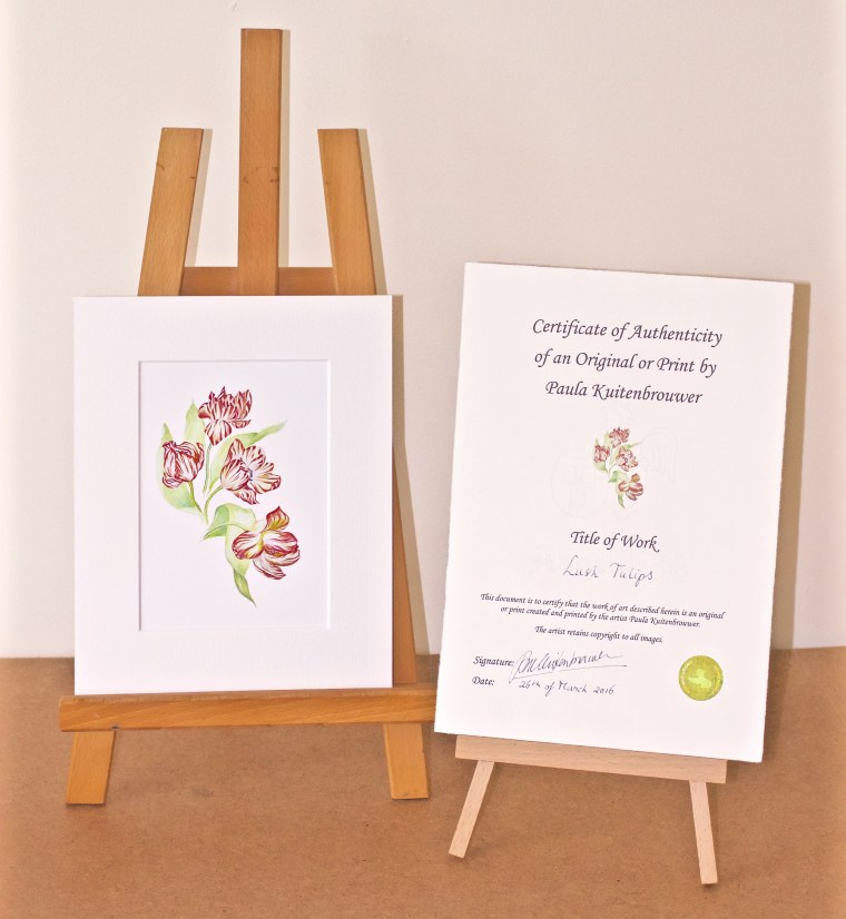 Certificate of Lush Tulips