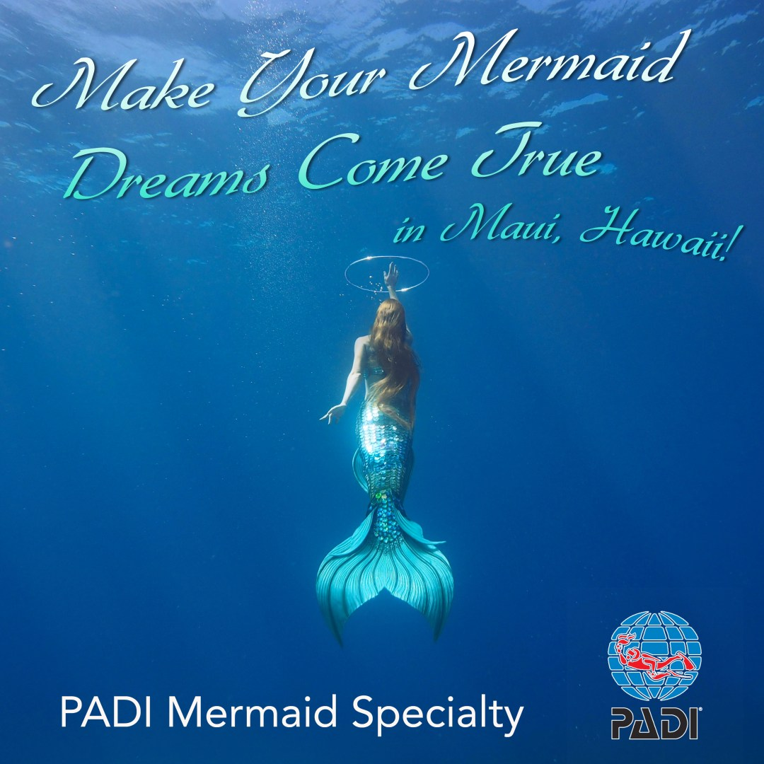 Become a mermaid with these mermaid certification classes like the PADI Mermaid and the PADI Advanced mermaid. Get your mermaid certification card and become a PADI Mermaid with us in Maui!