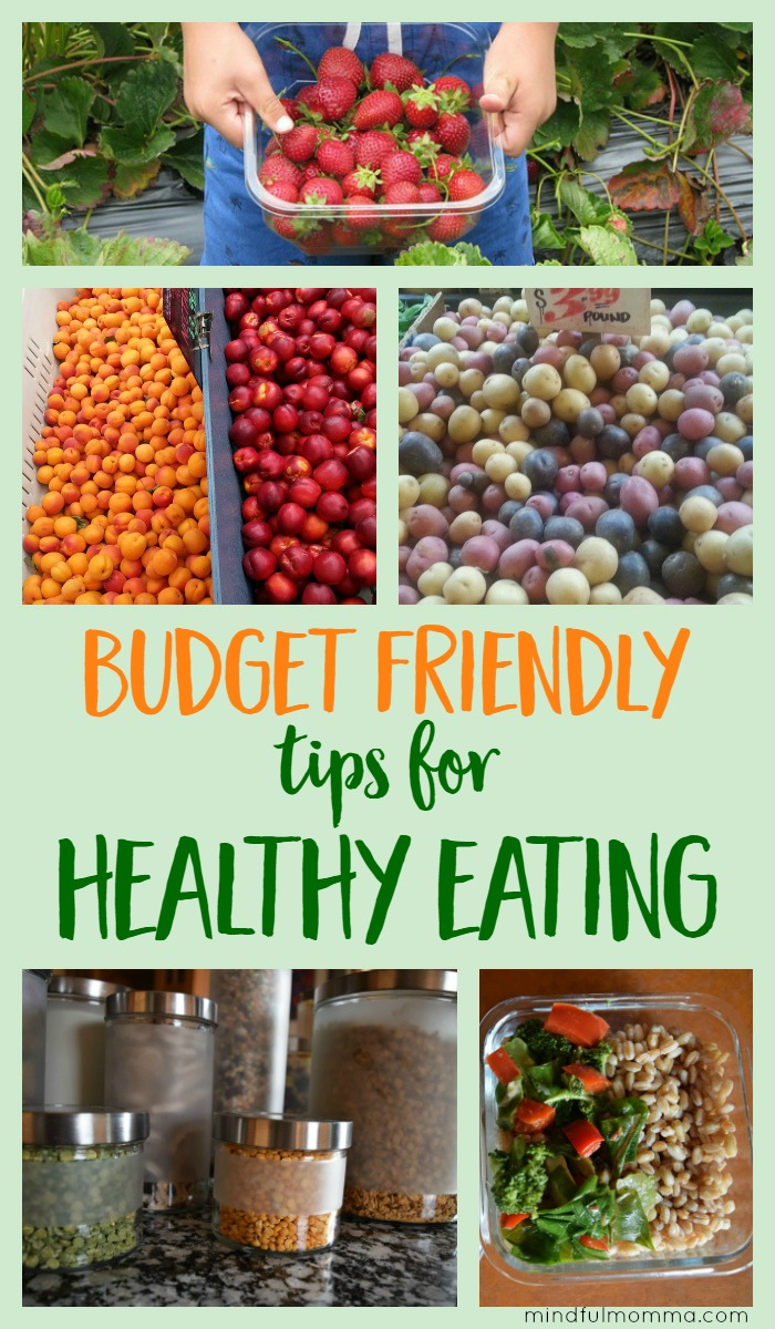 Tips for how to eat healthy food even while you are on a budget. | healthy eating | real food | nutrition #frugal #healthyfood via @MindfulMomma