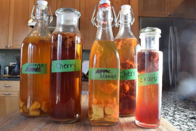 Kombucha brewing mistakes - bottles of homemade kombucha