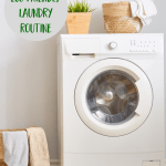 Perfect Your Green Laundry Routine with These 5 Simple Steps