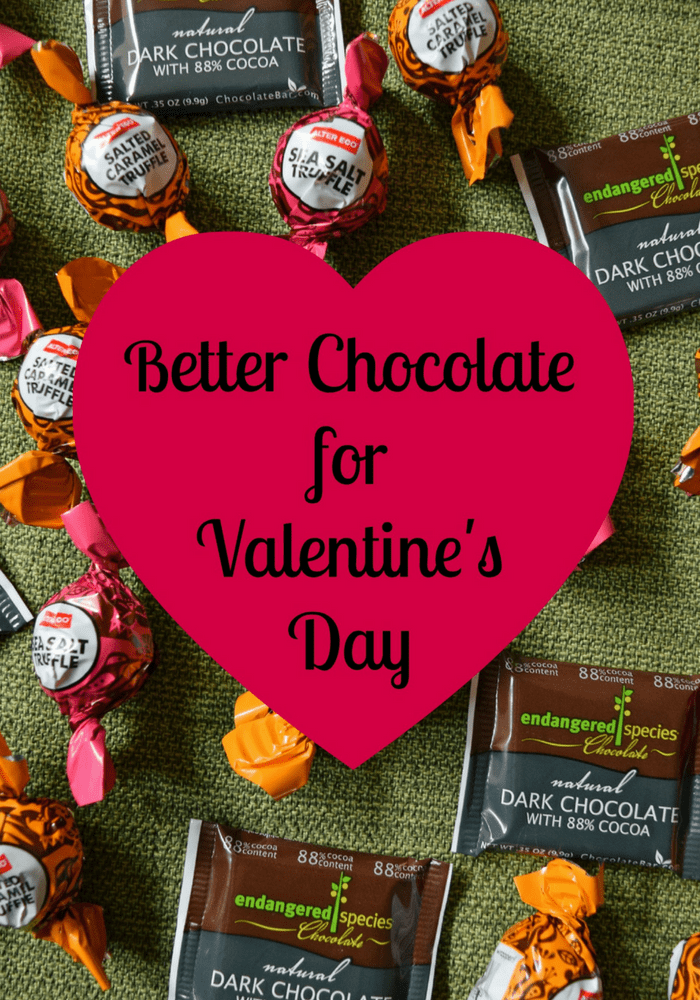 Don't buy cheap chocolate for Valentine's Day! Find out which brands have the best organic and fair trade chocolate that tastes great and you can feel good about giving. | organic brands | Valentine's Day gifts | #chocolate #valentines  via @MindfulMomma