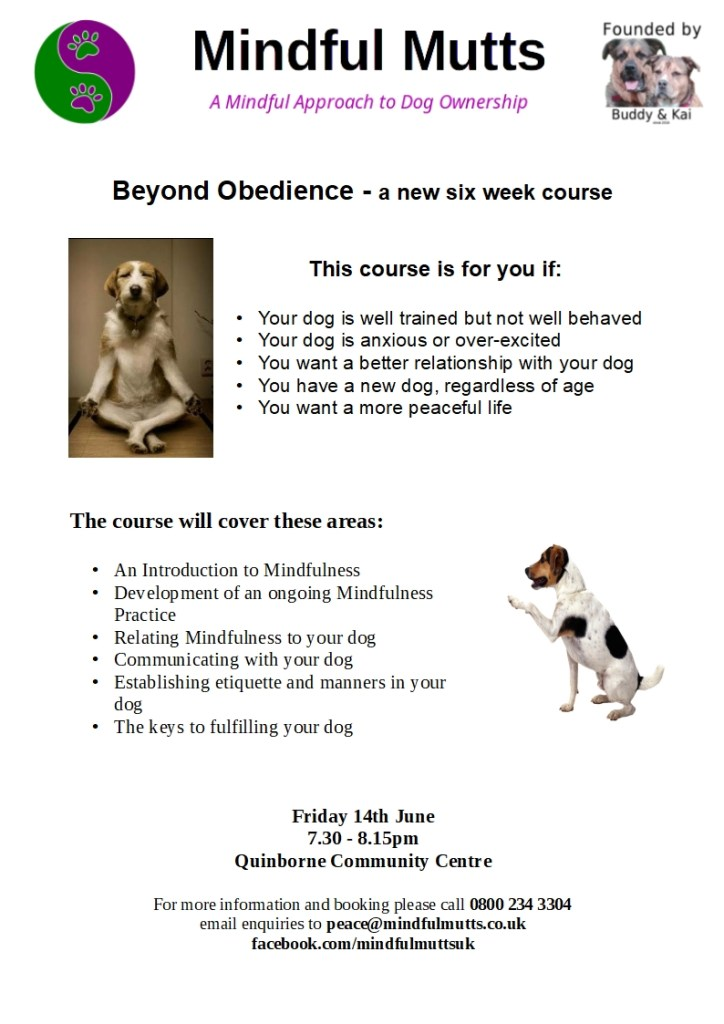 course advert