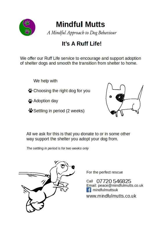 Advert for Ruff Life
