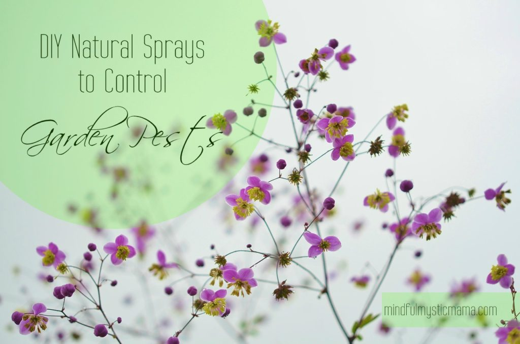 natural garden sprays