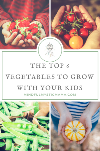 The Top 6 Vegetables to Grow with Your Kids