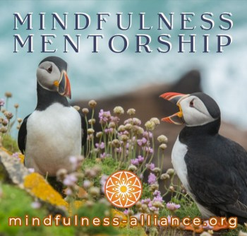 Mindfulness-Mentorship.jpg