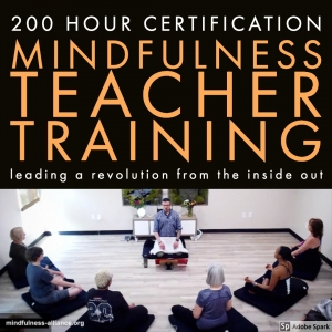 Mindfulness Teacher Training