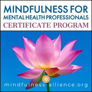 MMHP Certificate Program
