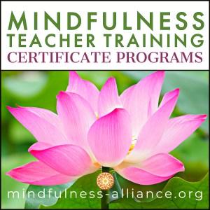 Mindfulness Teacher Training Certificate Programs
