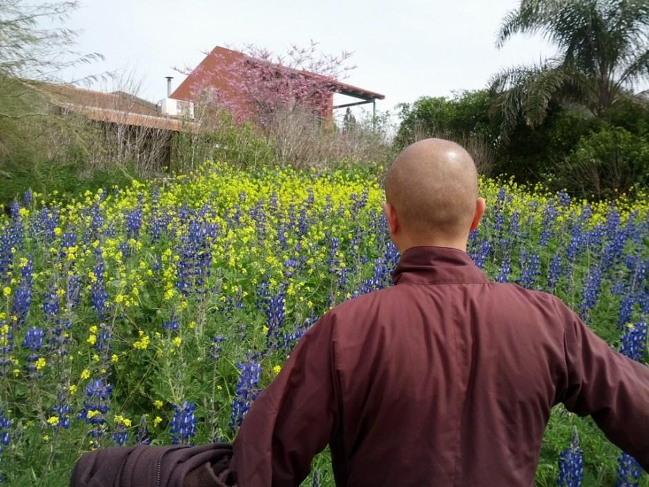 Monk, flowers