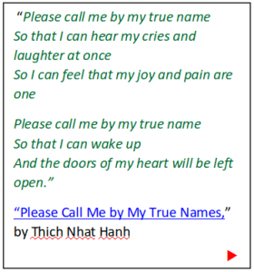 Call me by my true names (song)