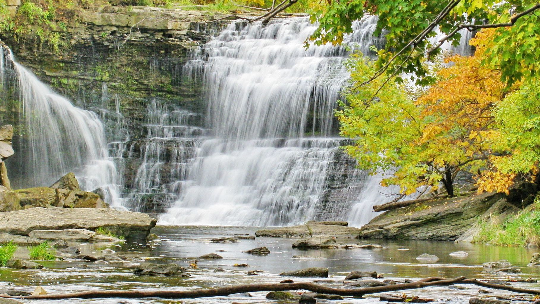 In The Flow By Gil Fronsdal