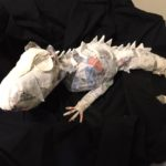 Paper Mache Dragon in the works