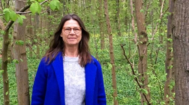 Mindfulnessforeningen fylder 5 år: Vi vil være for alle, der arbejder professionelt med mindfulness