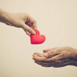 compassione_thumb_medium250_250