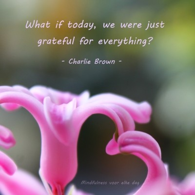 dankbaarheid