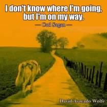 Heb vertrouwen in de weg de je gaat.