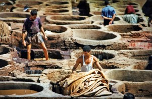 Leather tannery, Fez, Morocco, 1997