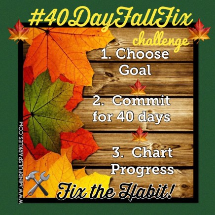 40 Day Fall Fix Instructions