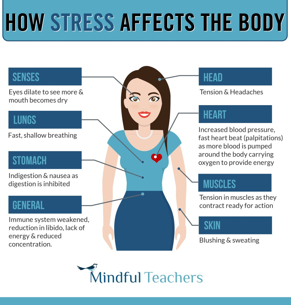 stress teaching body