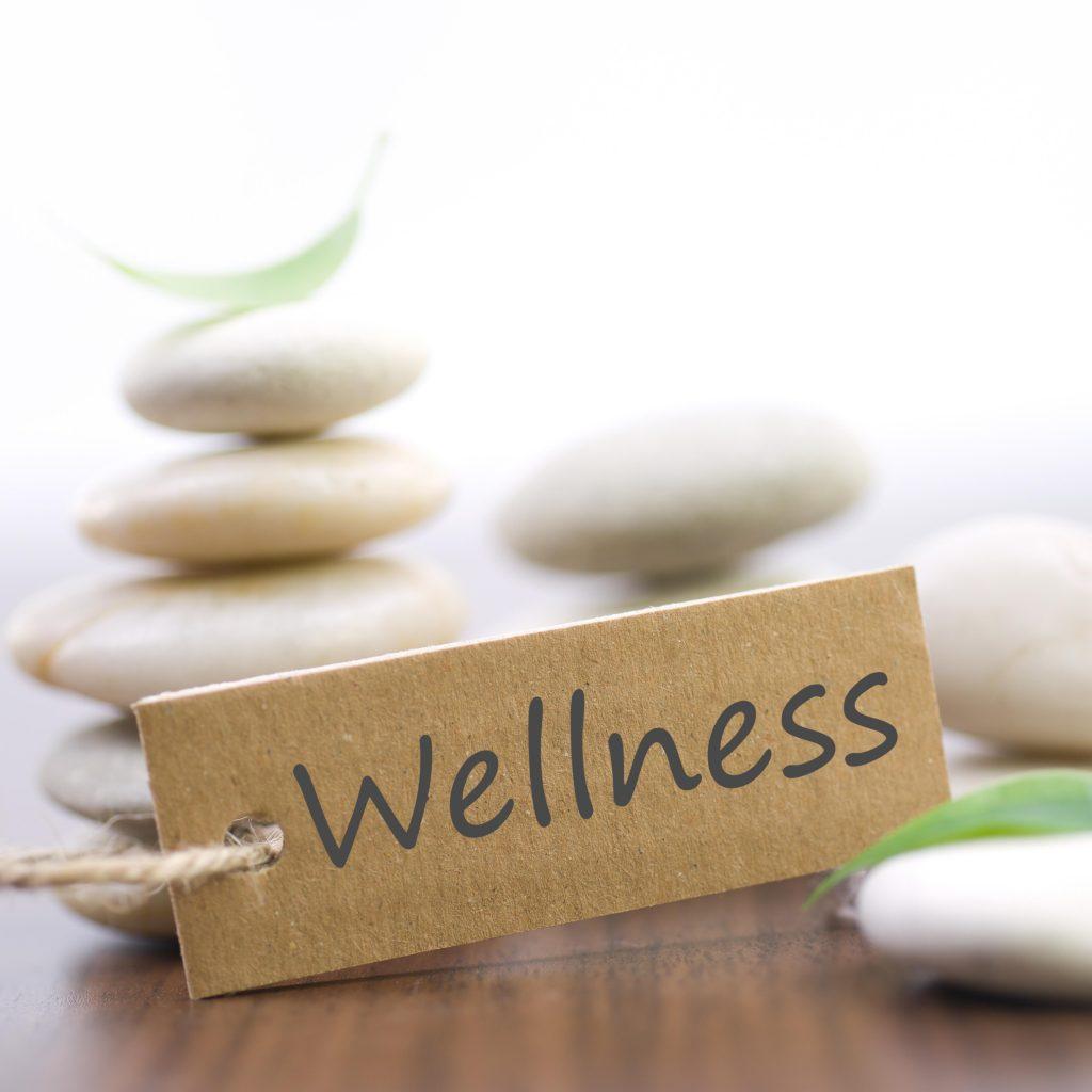 wellness-1024x1024