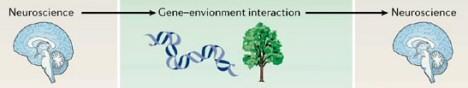 brain_environment_interaction.jpg