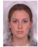 average_face_girl.jpg