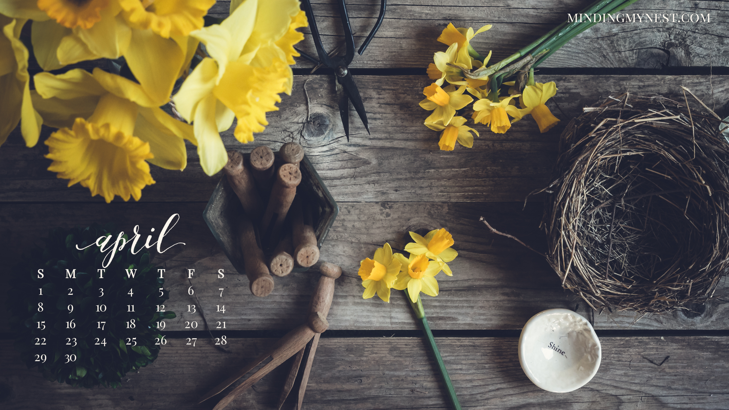 Computer Backgrounds Spring Rustic