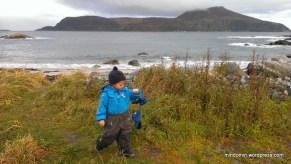 Utsikt mot Lepsøya