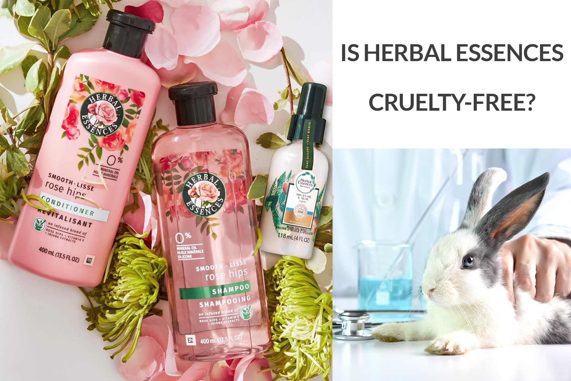 Is Herbal Essences Cruelty-Free?