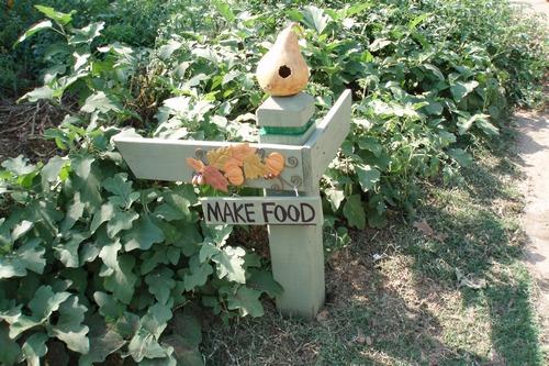 Front yard food - Adam's garden
