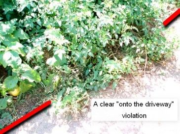 onto the driveway violation