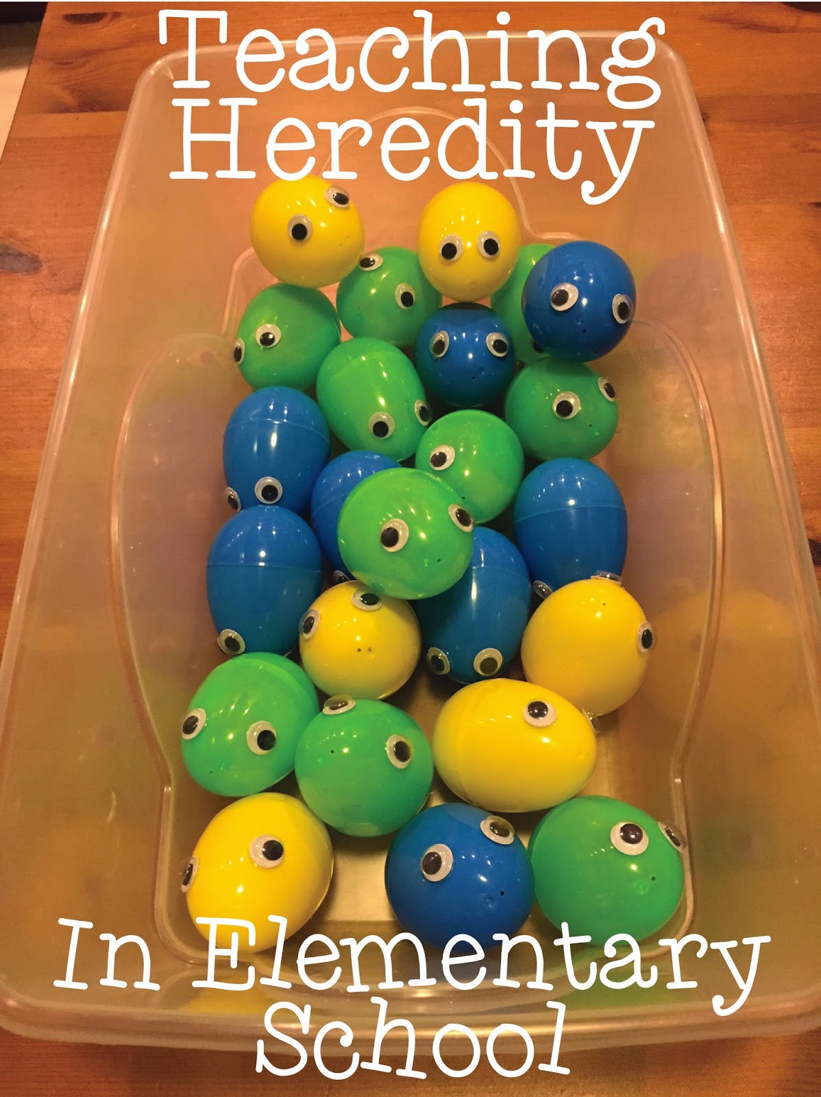 Heredity Worksheet Grade 3