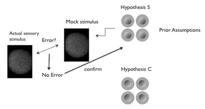 Figure 3: Simplified illustration of hypothesis-testing in vision. The sensory stimulus is a pattern of light projected on the retina.