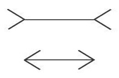 Figure 1: Standard Müller-Lyer stimuli incorporating straight lines of equal length tipped with slanting fins.