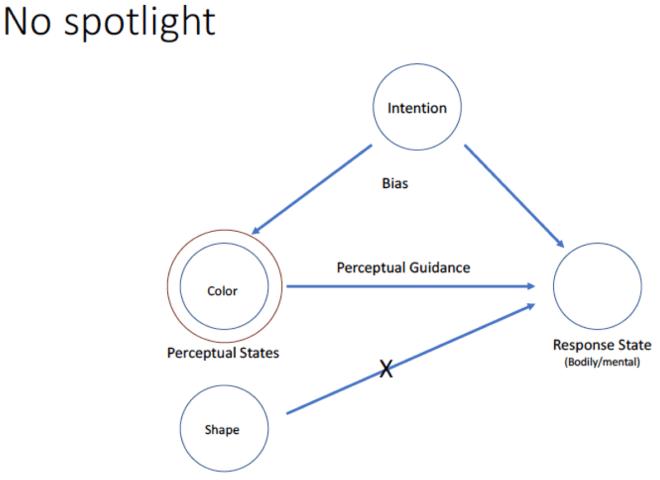 The no-spotlight model