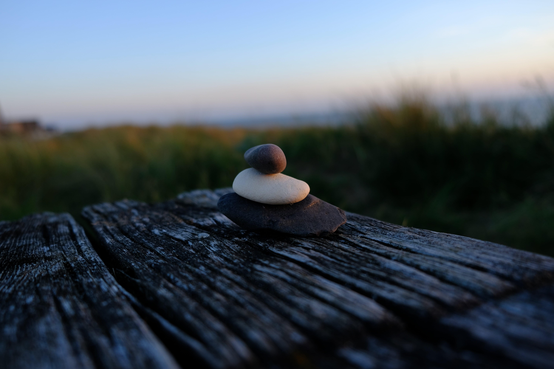 MindSteadyGo - Guided meditation