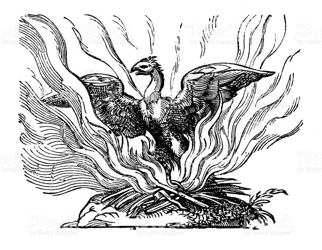 Front National : le Phoenix renait toujours de ses cendres