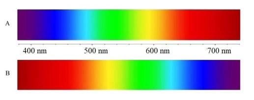 Inverted light spectra qualia