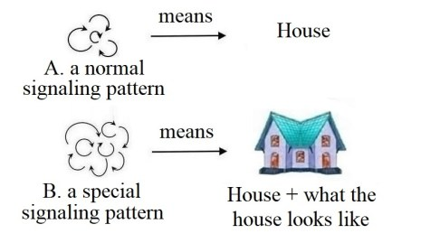 signaling patterns ans meanings