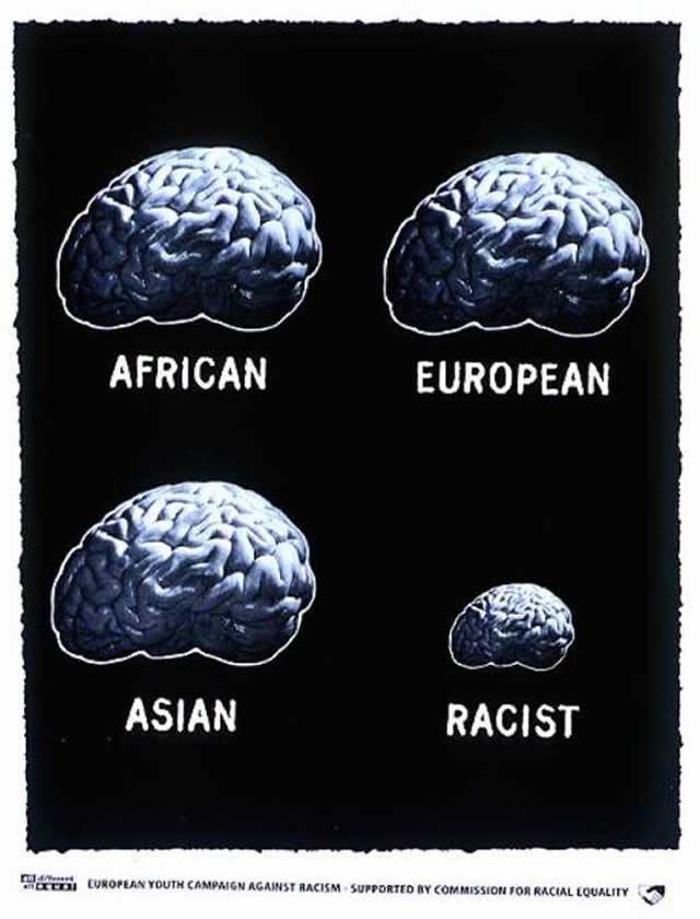 Мозг расиста